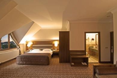 Buyuk Abant Oteli & Kongre Merkezi / Uygun otel